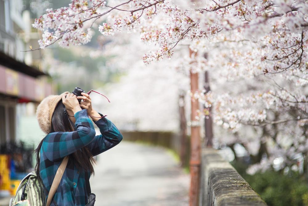 Южная Корея: планируем путешествие