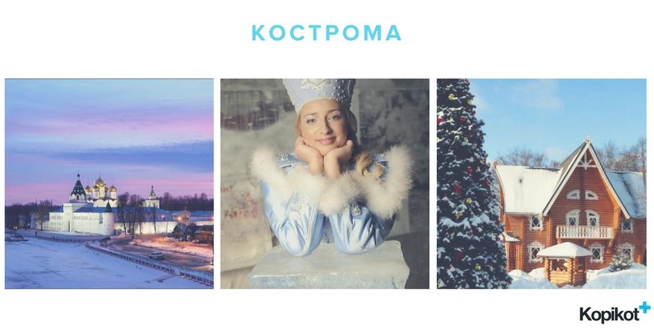 в Кострому к снегурочке на новый год