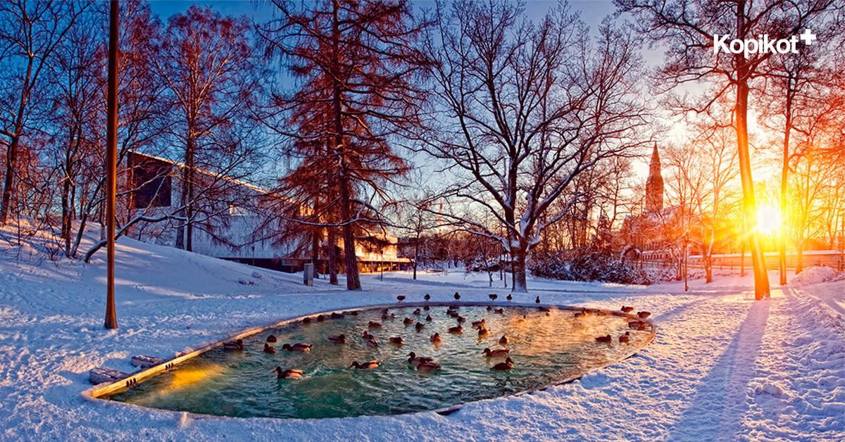 Хельсинки пруд